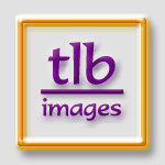 tlb images @ tlbtlb.com - portraits using photoshop and painter